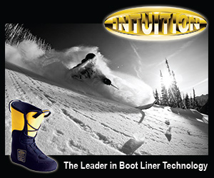Intuition Boot Liners